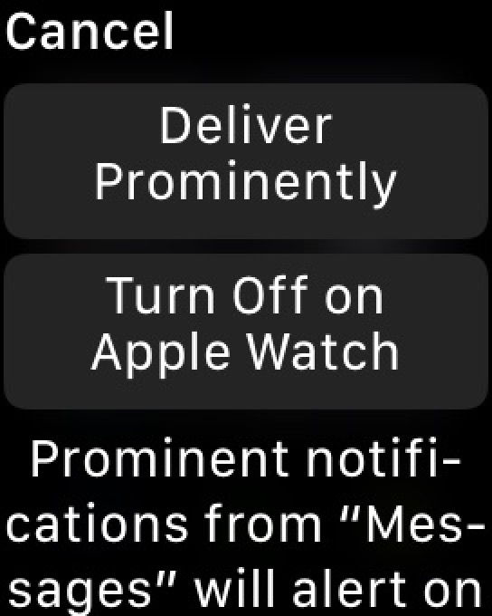 quot; Lever Prominentlyquot; for notifications on Apple