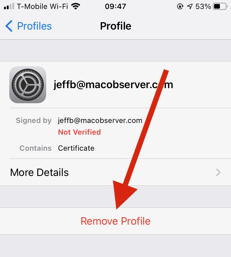 Deleting a Profile in iOS - Email Encryption with iOS Mail